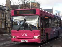 Bus Envibus rose