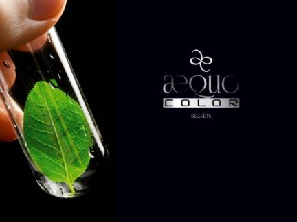 Création de l'univers de la marque et du pacakging Aequo color, by Eric Favre
